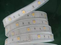 Photo: 3528 warm white 60 led permetepvcsilicon hollow tube ip67