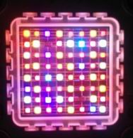 Image: Customized 120W Grow Light LED Modules Lighting Test